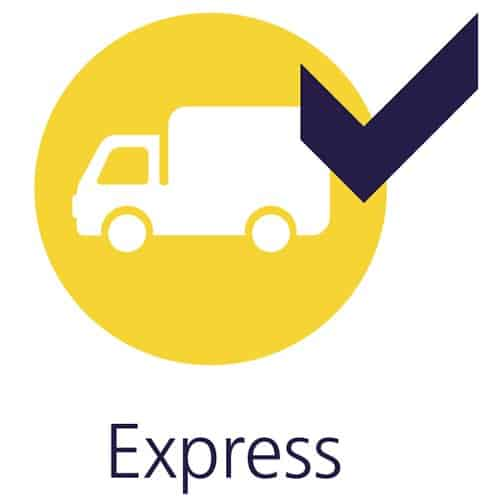 Express delivery UK